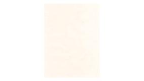 Ensfarvet Hvid Lak