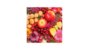 Autumn Fruits and Flowers